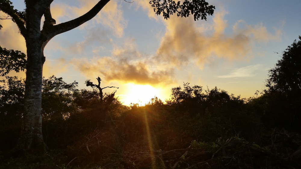 Sunset in the Galapagos after a VolunTravel Project