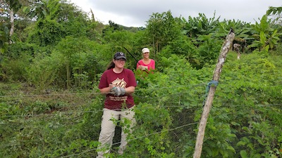VolunTravel Work on Farm in Galapagos